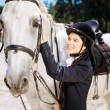 Racing horse. White racing horse standing submissi...