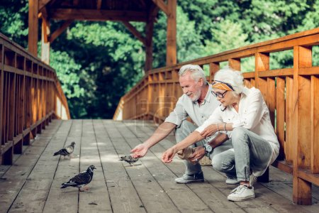Photo pour Nourrir les colombes. Contesté beau heureux rayonnant joyeux beau assis vieillissement couple aux cheveux argentés portant des vêtements élégants nourrir les pigeons sur le pont . - image libre de droit