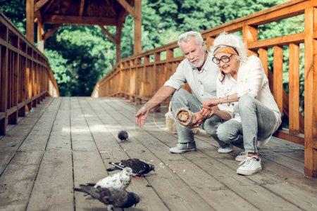 Photo pour Donner de la nourriture aux oiseaux. Contesté beau rayonnant joyeux joyeux beau assis conjoints aux cheveux argentés dans les années portant des vêtements élégants donnant les miettes aux colombes sur le pont . - image libre de droit