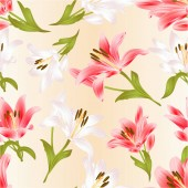 Seamless texture white and red Lily  Lilium candidumflower with leaves and bud festive background vintage vector illustration editable hand drawn