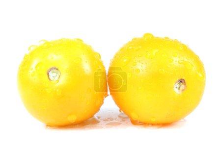 Photo pour Tomates jaunes mûres sur fond blanc - image libre de droit