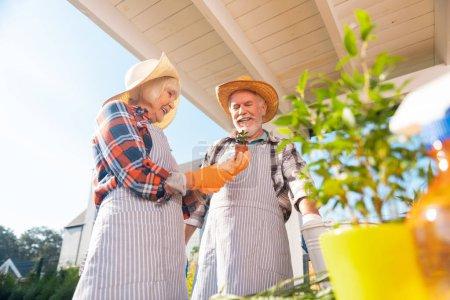 Photo pour Une journée chaude. Couple retraité passer chaud matin d'été à l'extérieur de leur maison plantation de fleurs - image libre de droit
