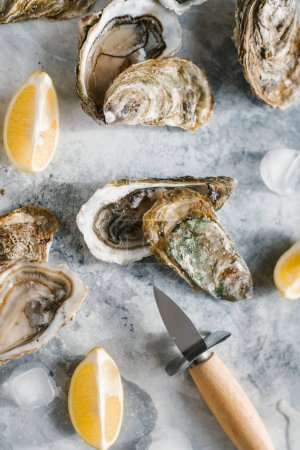 Photo for Top view of fresh oysters, ice cubes and lemon pieces on textured tabletop - Royalty Free Image