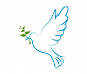 dove of peace on white