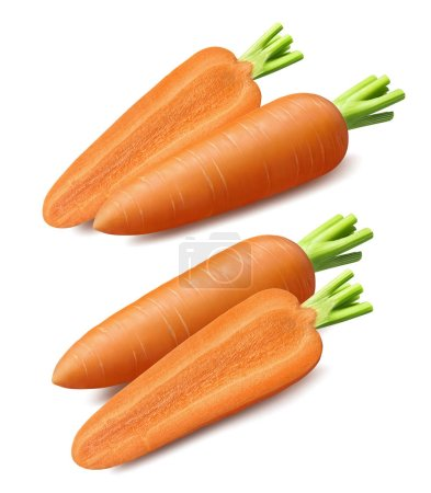Photo for Sliced carrot set isolated on white background. Design elements with clipping path - Royalty Free Image