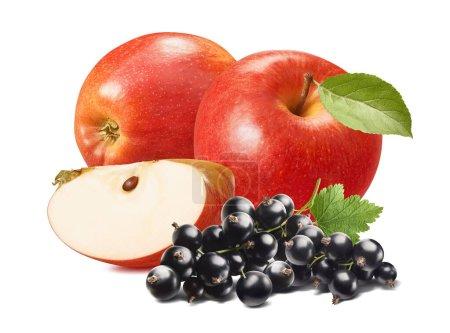 Photo pour Pomme rouge et cassis isolés sur fond blanc. Élément de conception de paquet avec chemin de coupe - image libre de droit