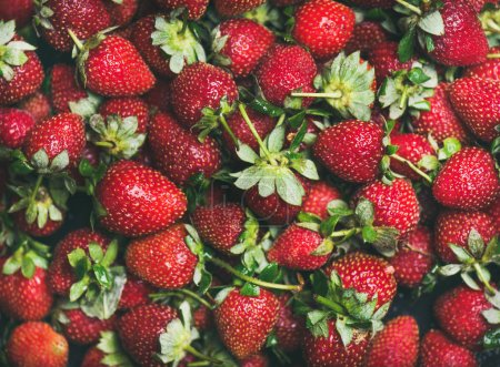 Photo for Fresh strawberries texture, wallpaper and background. Wet strawberries with leaves - Royalty Free Image
