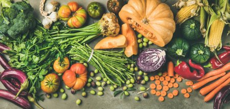 Healthy vegetarian seasonal Fall food cooking background. Flat-lay of Autumn vegetables and herb from local market over grey concrete background, top view. Clean eating, alkaline diet food