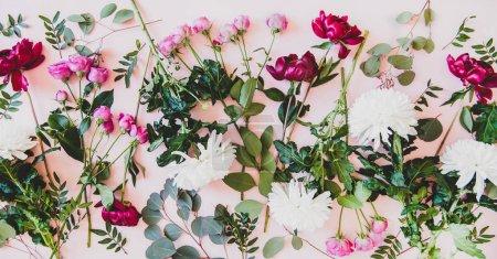 Foto de Varias flores de verano planas. Peonías púrpuras, rosas rosas, crisantemos blancos y ramas verdes con hojas sobre fondo rosa pastel, vista superior. Textura de la flor, fondo de pantalla y fondo - Imagen libre de derechos