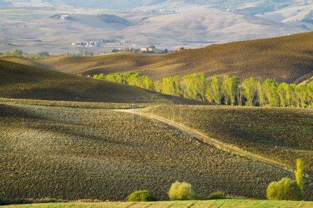 Foto de Vista panorámica de la Toscana paisaje al amanecer, Pienza, Italia - Imagen libre de derechos