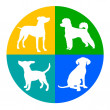 Animal graphic with dog in vector quality...