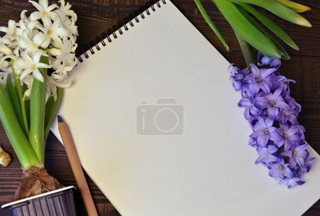 Photo for Top view of hyacinth and copy space blank list on table.  Vintage nature background with blooming flowers indoors - Royalty Free Image