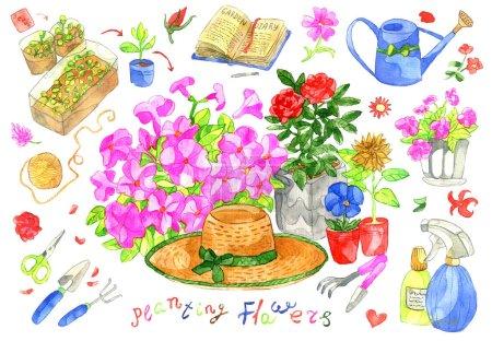 Photo pour Collection design avec pétunia et fleurs de roses, outils de jardinage et décoration isolée sur blanc. Set de doodle aquarelle avec objets de jardin vintage, illustration dessinée à la main, fond d'été avec art cip. - image libre de droit