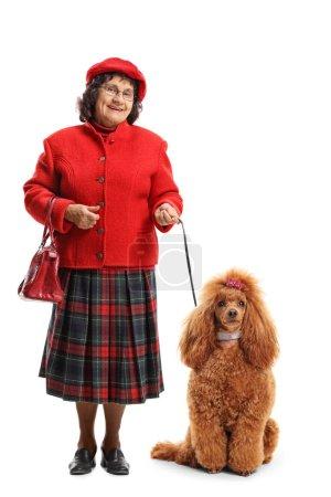 Foto de Retrato de longitud completa de una mujer mayor con un Perro Caniche rojo aislado sobre fondo blanco - Imagen libre de derechos