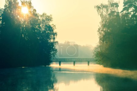 Photo for Photo of river, bridge, trees at sunrise - Royalty Free Image