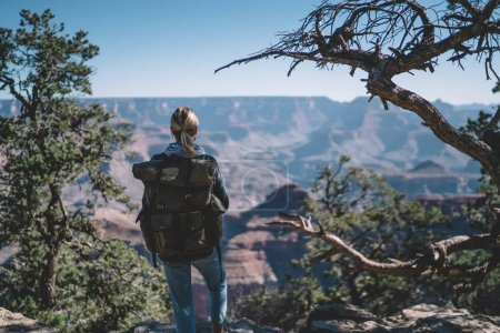 Back view of young woman with backpack exploring wild nature of America hiking in National Park, female traveler having adventure journey in Grand Canyon environment looking at direction for trekking