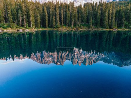 Photo for Picturesque peaks of Dolomites mountains in reflection of crystal clear pond surrounded by coniferous forest. Lake of Caresse in Italy. Scenic place and famous touristic destination. Primeval nature - Royalty Free Image