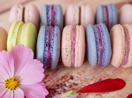 Photo for Pasta or macaroons on wooden background close-up. Macaroons with flower copy space - Royalty Free Image