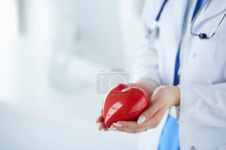 Photo for Female doctor with stethoscope holding heart, on light background. - Royalty Free Image