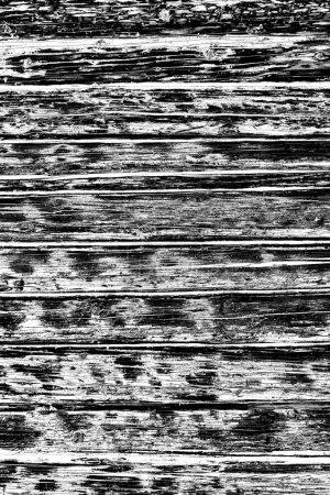 Foto de Fondo grunge abstracto. Textura monocromática. Fondo texturizado en blanco y negro - Imagen libre de derechos