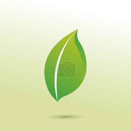 Leaf icon vector illustration