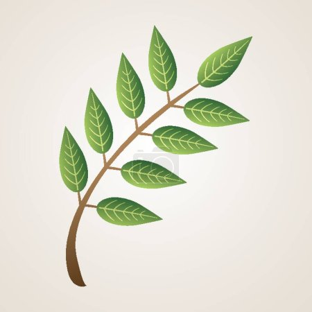 Branch of leaves vector illustration