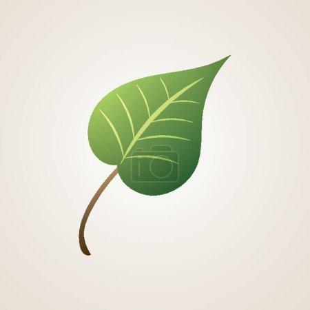 Green leaf vector illustration