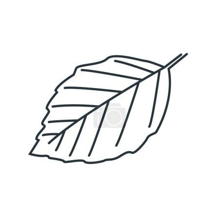 leaf, design vector illustration