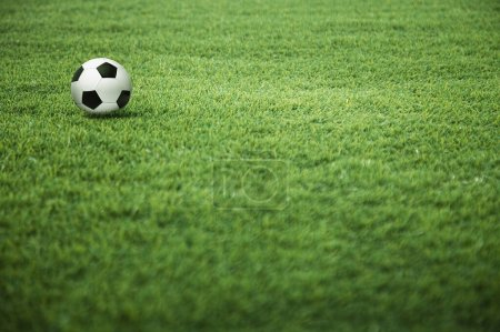 Photo for A soccer ball on the playing field - Royalty Free Image