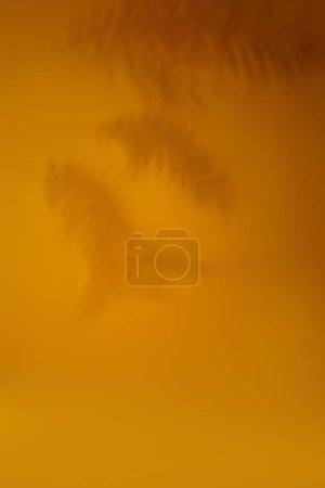 Photo pour Fond d'ombres feuilles de palmier sur mur orange . - image libre de droit