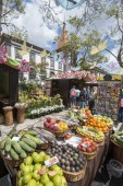 the fruit market and market street at the avenida Arriaga at the Festa da Flor or Spring Flower Festival in the city of Funchal on the Island of Madeira in the Atlantic Ocean of Portugal.  Madeira, Funchal, April, 2018