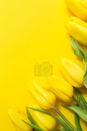 Photo for Yellow tulips and paper on yellow background with space for your text - Royalty Free Image