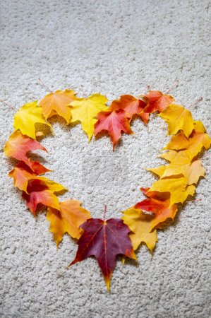 Photo for Season of beautiful autumn leaves in heart shape - Royalty Free Image