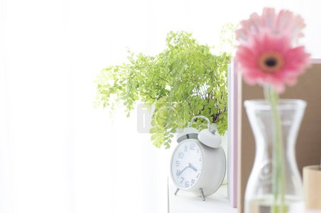 Photo for Vintage alarm clock, pink flowers in vase and green plant in home interior - Royalty Free Image
