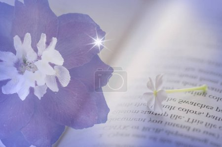 Photo for Purple flower on blurred background of book page - Royalty Free Image