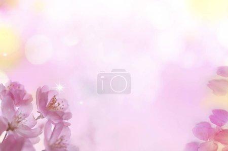 Foto de Abstract colorful background with bokeh lights and flowers - Imagen libre de derechos