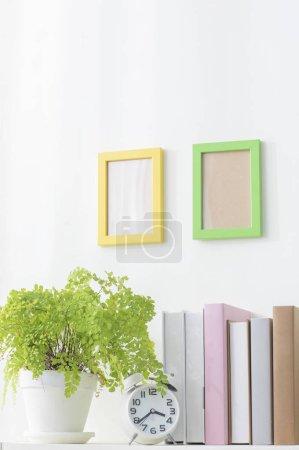 Photo pour Plante verte et horloge avec des livres sur le fond blanc - image libre de droit