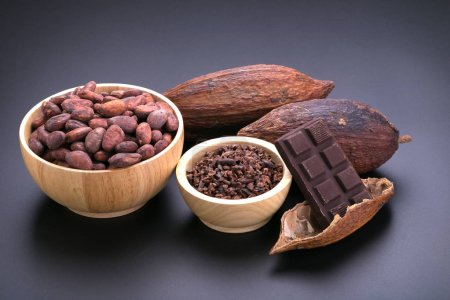 Chocolate bar and dried cocoa pod, cocoa nibs in w...