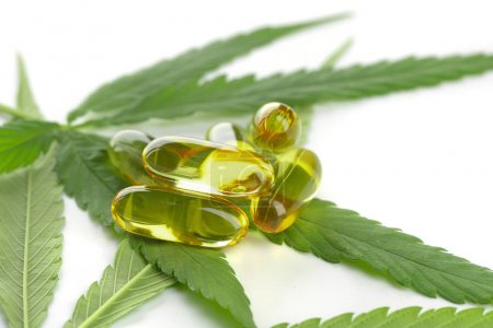 Cannabis essential oil Capsules with cannabis leaves on white background.