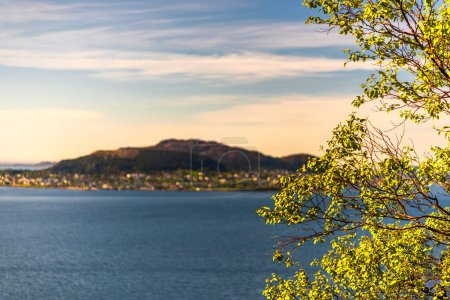 Photo pour Lac en montagne, branches d'arbres aux feuilles vertes - image libre de droit
