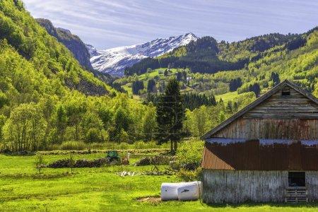 Photo pour Montagne herbe verte prairie, maison en bois - image libre de droit