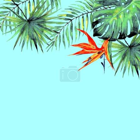 Photo pour Les palmiers tropicaux magnifiques feuilles et fleurs, aquarelles - image libre de droit