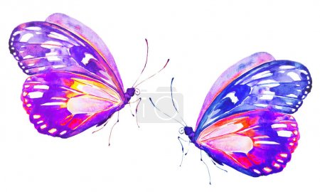 beautiful bright  butterflies, watercolor, isolated on a white