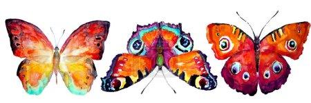 Photo pour Beau papillon, aquarelle, isolé sur un blanc - image libre de droit