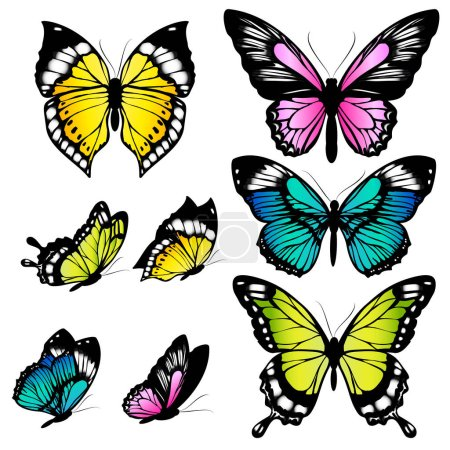 Set of beautiful colorful butterflies isolated on ...