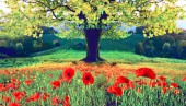 Beautiful autumn landscape with a lonely tree and poppies (meditation, harmony, anti-stress, prosperity - concept)