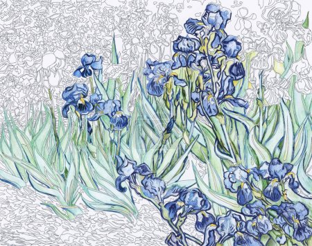 Irises (1889) by Vincent van Gogh adult coloring page