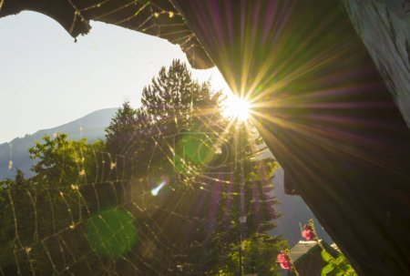 Photo for Beautiful summer evening in a French village - Royalty Free Image
