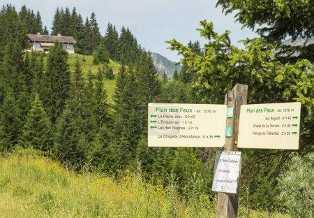 Photo pour Paysage d'été dans les Alpes Français. Vallée d'Abondance dans la région des Portes du Soleil - image libre de droit