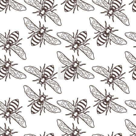 Illustration for Vector seamless vintage pattern with linear bee. Organic honey background. Concept for honey package design, label, wrapping, fashion prints. - Royalty Free Image